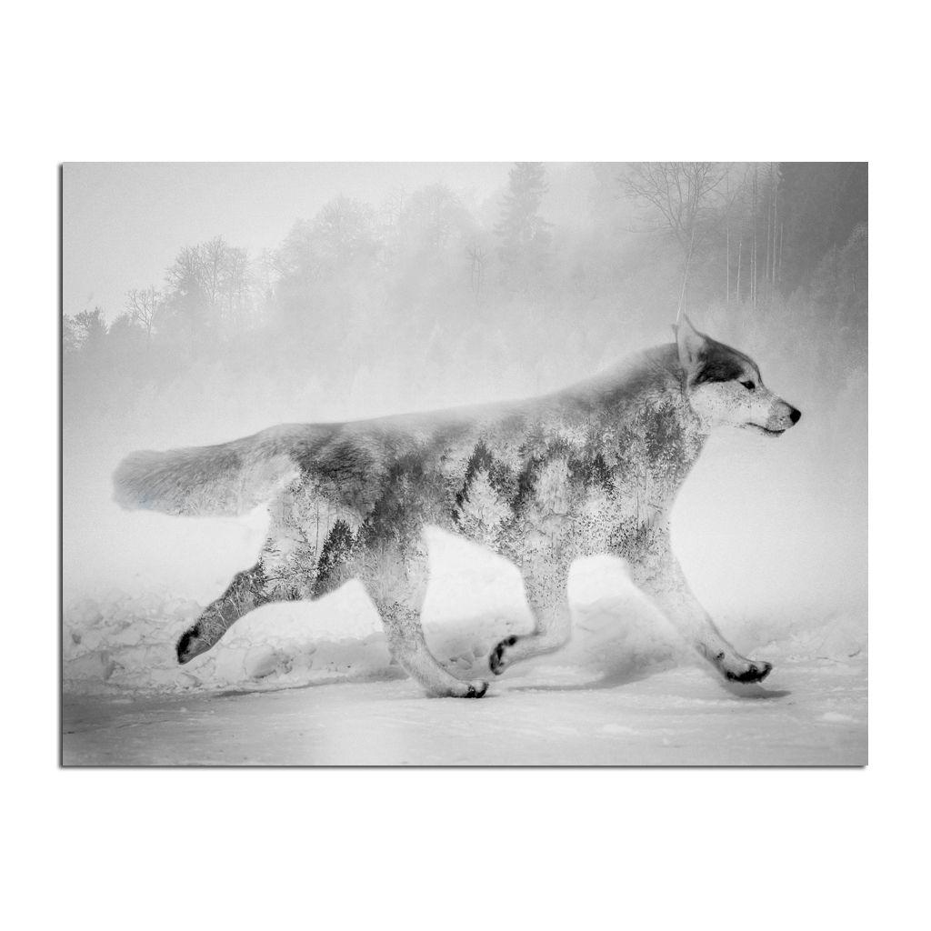 Obraz CANVAS NORDIC WOLF 75x100 cm