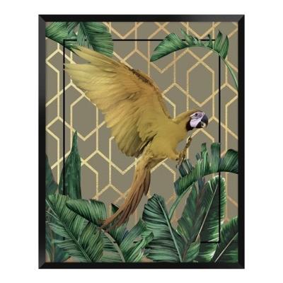 Obraz PAPUGA 40x50 cm