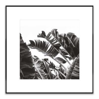 Obraz ARTBOX BANANA 50x50 cm