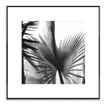 Obraz ARTBOX LEAVES 50x50 cm