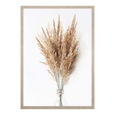 Obraz PAMPAS GRASS II 53x73 cm